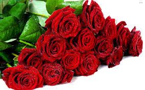 Mazzo Di Fiori Pari O Dispari.Rose Regalate Sempre In Numero Dispari Ecco Il Perche